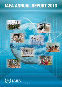 IAEA Annual Report for 2013