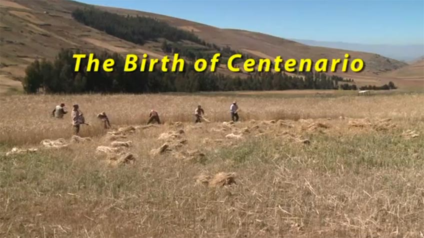 The Birth of Centenario
