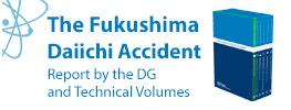 Fukushima Report