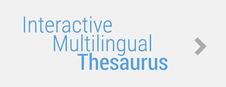 interactive multilingual thesaurus