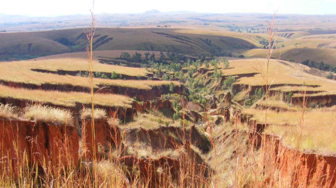 world soil day  madagascar combats soil erosion with tradition and nuclear science