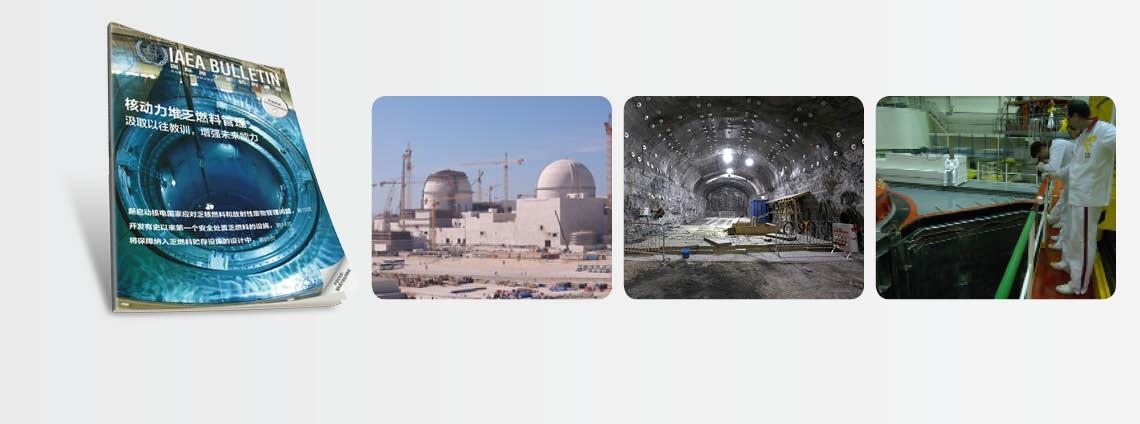 核动力堆乏燃料管理