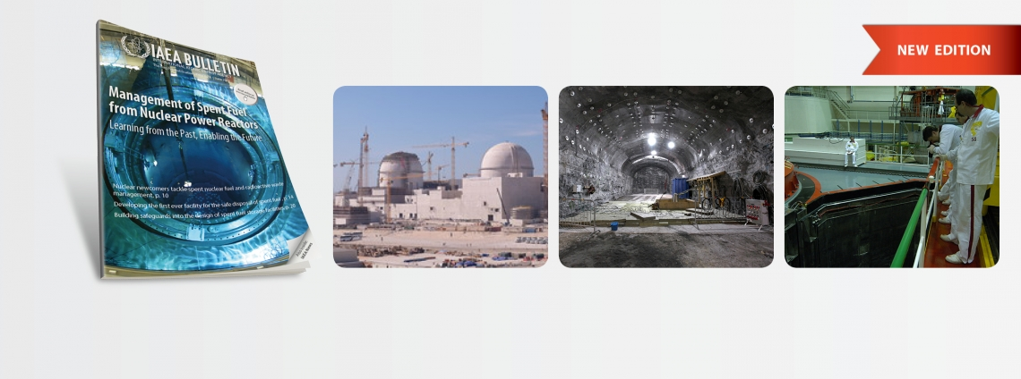 International Atomic Energy Agency | Atoms for Peace and