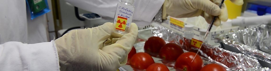 Food Safety And Quality Iaea
