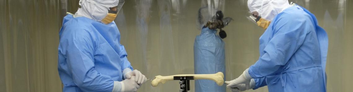 Medical Sterilization