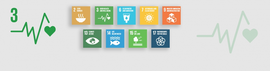 Sustainable Development Goal 3 Good Health And Well Being Iaea