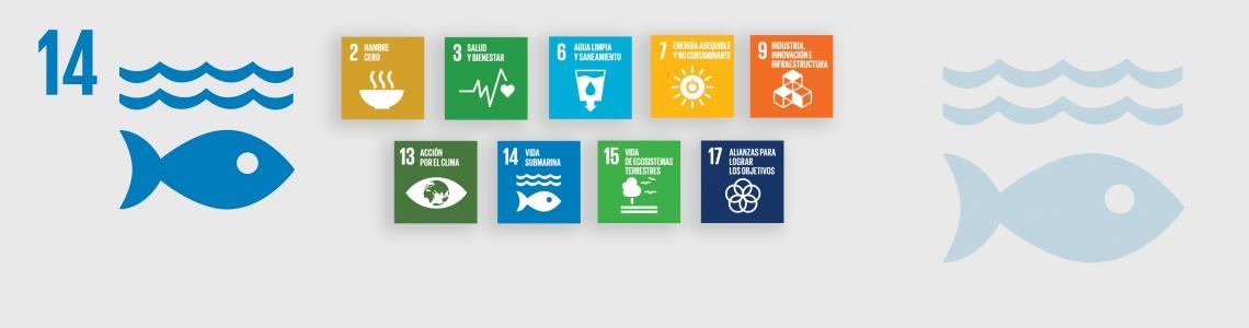 SDG-14-Spanish