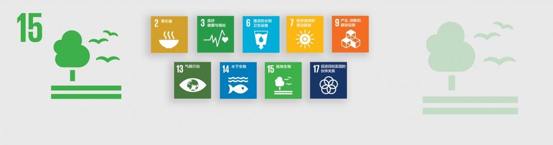 SDG-15-Chinese