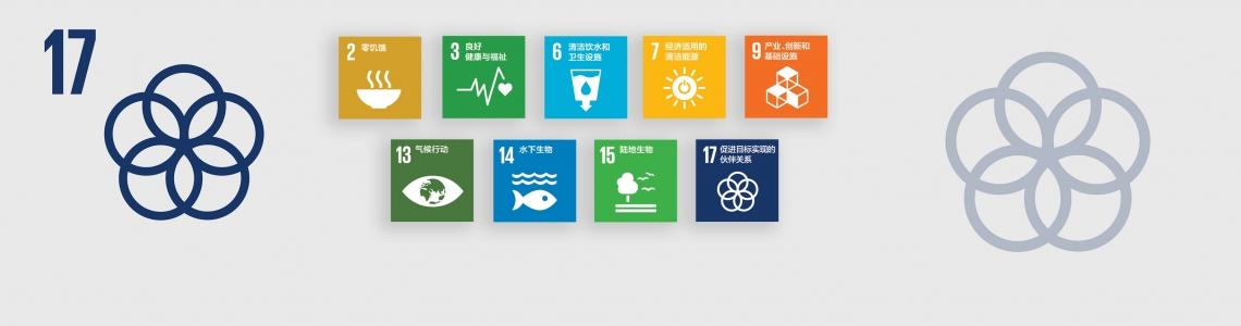SDG-17-Chinese