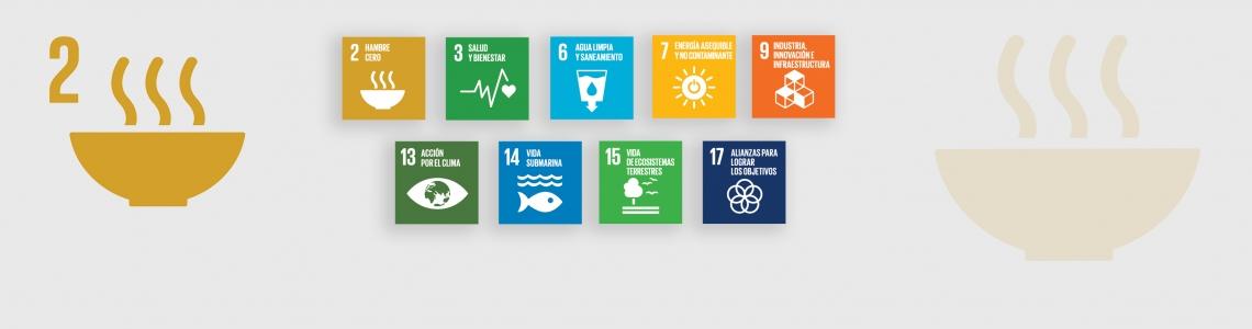 SDG-2-Spanish