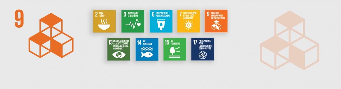 SDG-9-French