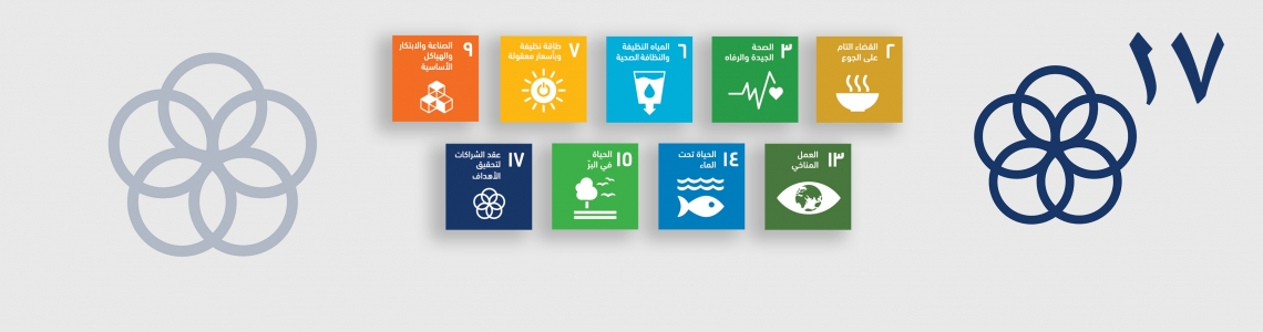 SDG-17-Arabic