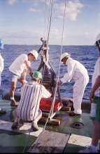 The study aimed to assess the Mururoa and Fangataufa Atolls for radiological safety after the end of nuclear testing. The study concluded there were no radiation health effects resulting from residual radioactive material. 1996. Please credit IAEA/ MOUCHKIN Vadim