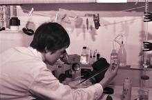 Staff member examining plankton under microscope. 1966. Please credit IAEA