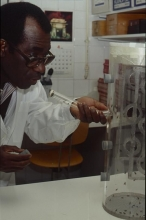 A specialty of the IAEA laboratory is pest control by the sterile insect technique, in which large numbers of insects are reared and sterilized before being released to mate with the pest population.  Scientist working on separation of males and female tsetse flies using a flytrap. 1993-1997. Please credit IAEA