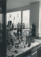 Outside the window in the background is the Oesterreichische Studiengesellschaft reactor. The IAEA laboratory will use the facilities of the Austrian reactor for activation analysis.  October 1961.  Please credit IAEA