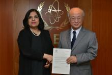 Presentation of credentials by the new Resident Representative of Pakistan, Ms Ayesha Riyaz to IAEA Director General Yukiya Amano. IAEA, Vienna, Austria, 21 January 2014.