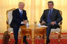 IAEA Director General Yukiya Amano met Mr. Teodor Baconschi, Minister for Foreign Affairs of Romania, on 19 May 2010. (Photo: Office of the Minister of Foreign Affairs, Romania)