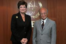 On 15 June 2011, Ms. Ellen Tauscher, Under-Secretary of the State for Arms Control and International Security Affairs, met IAEA Director General Yukiya Amano at the IAEA's headquarters in Vienna, Austria.