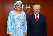 IAEA Director General Yukiya Amano met with Rakiatou Christelle Kaffa-Jackou, Deputy Minister for Foreign Affairs of Niger, on 9 February 2016 at the IAEA headquarters in Vienna, Austria.
