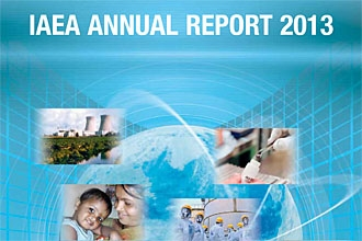 Annual Report for 2013