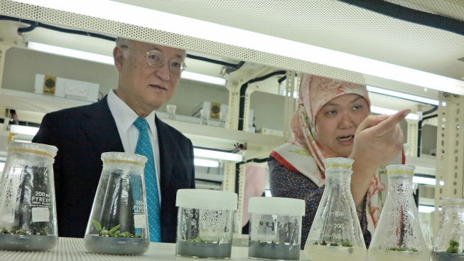IAEA Director General Yukiya Amano learns about ongoing work at the Brunei Agricultural Research Centre.
