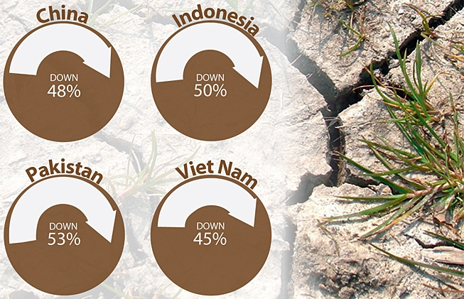 Reduction in Soil Erosion in Target Areas Since 2012