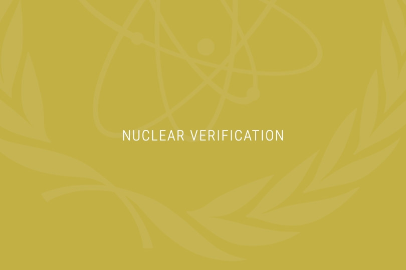 iran and nuclear proliferation essay Essay on nuclear proliferation and us grand strategy neo-isolationists embrace a constricted view of us national interest: national security and defense –the protection of the security, liberty, and property of the american people –is the only vital us interest.