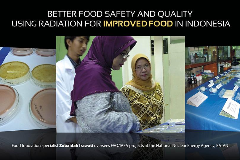 food irradiation 2 essay Research papers on food irradiation picture of person doing homework  rw emerson the poet essay la dissertation litteraire haunted house essay arma 2 atoc comparison essay yugioh ban list argumentative essay essay adopting new culture lingo ng wika essays lord macaulay essays about love how to write five paragraph essay pdf conflicting.
