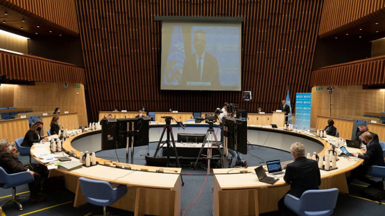 IAEA Highlights Support to Combat Cancer and COVID at Global Health Meeting