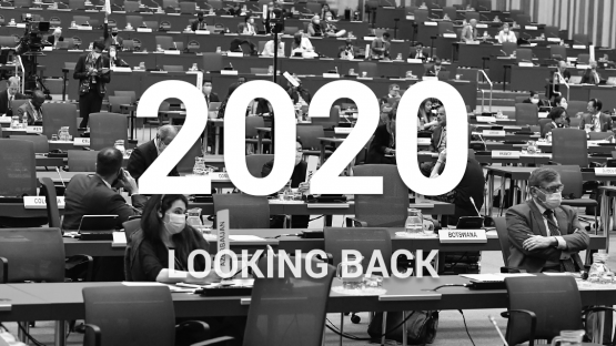 2020 - Looking back