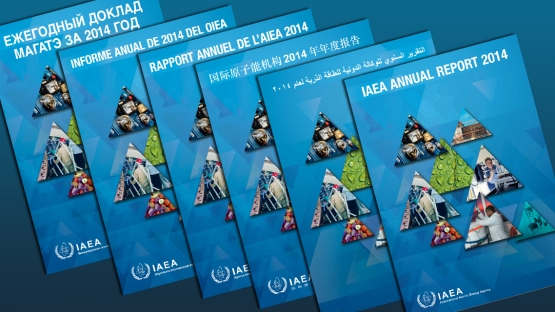 IAEA Publishes Annual Report for 2014