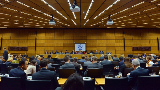 IAEA Board of Governors, 2 March 2015