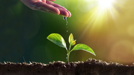 Call for Papers: International Symposium on Managing Land and Water for Climate-Smart Agriculture 2022