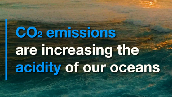 CO2 Emissions Increase Ocean Acidity