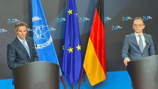 Germany To Remain Key IAEA Member After Nuclear Power Exit, Director General Grossi Says