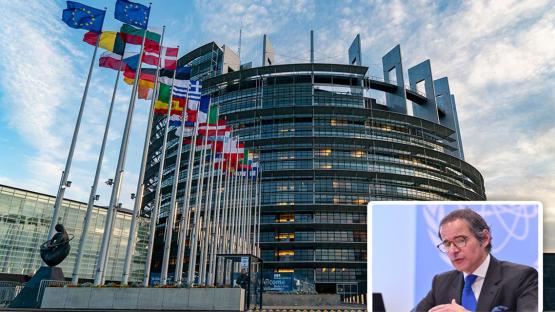 Grossi - European Parliament