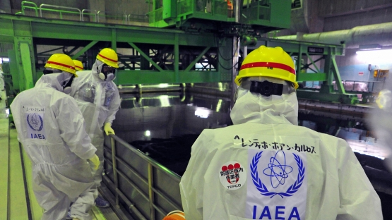 A team of IAEA experts, led by the IAEA Department of Nuclear Energy's Juan Carlos Lentijo (right), peer into the Common Spent Fuel Pool at TEPCO's Fukushima Daiichi Nuclear Power Station, 27 November 2013