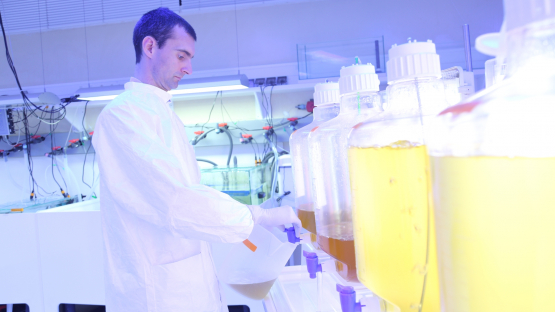 Studying the ocean and pollutants in IAEA laboratories in Monaco