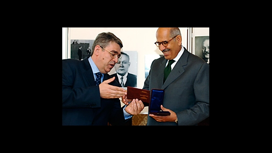 DG receiving the decoration from the Russian Ministry of Foreign Affairs