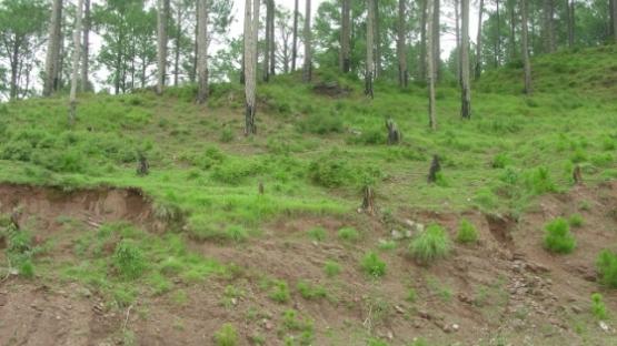 eroding soil Pakistan