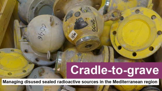 Yellow metal capsules containing sealed radioactive sources.
