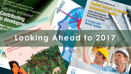 Looking ahead 2017