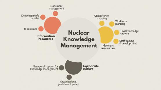 Nuclear energy, safe use of nuclear power | IAEA