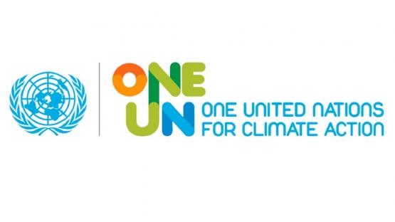 UN COP 21