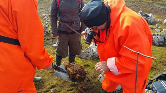 Scientist examines soil samples in Antarctica