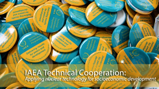 The IAEA's Technical Cooperation programme: Delivering results for peace and development.