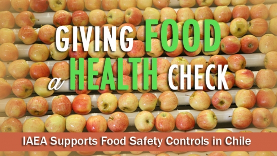 As the world population grows, so does demand for food, leading to an increase in the use of agrochemicals in farming. In most countries these chemicals are an important part of food production. But if they are not used properly, their residues can contaminate food. <br /><br /> The IAEA works with over 70 countries world-wide to support the use of nuclear and isotopic techniques in their food control systems. One of these countries is Chile.