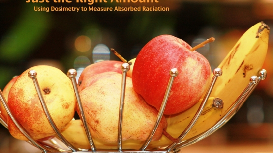 Ionizing radiation is used in agriculture - to prevent sprouting or ripening, to eliminate pathogens that can cause sickness in humans, and to kill insects that can disrupt the ecosystems of importing countries. <br /><br />(Photo: T. Kalapurackal)