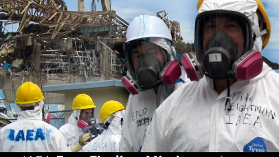 A team of international nuclear safety experts recently completed a preliminary assessment of the safety issues linked with TEPCO's Fukushima Daiichi Nuclear Power Station accident following the earthquake and tsunami that struck Japan in March 2011. The team - created by an agreement of the IAEA and Government of Japan - sought to identify lessons learned from the accident that can help improve nuclear safety around the world.